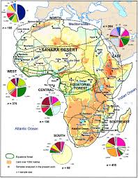 Africa Map Quiz Fill In The Blank by The Bantu People Mathilda U0027s Anthropology Blog