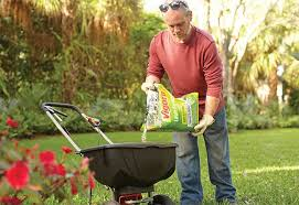 Fertilizer For Flowering Shrubs - know more about the right fertilizers for your garden at the home