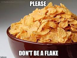 Flake Meme - image tagged in don t be a flake imgflip