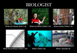 Meme Biology - image 251335 what people think i do what i really do know