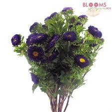Violet Wedding Flowers - purple flowers u2013 diy purple wedding flowers u2013 bloomsbythebox com