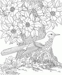 complicated coloring pages printable coloring