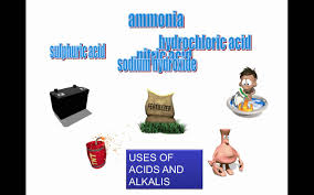 acids and alkalis introduction and indicators grade 7 youtube