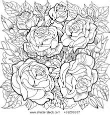 coloring pages with roses coloring page roses leaves stock photo photo vector illustration