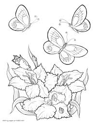 butterfly among flowers coloring page pictures of flowers and