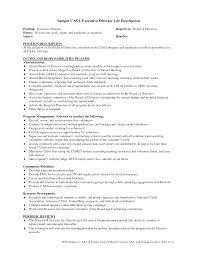 executive report template