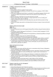 sle of resume risk assurance manager resume sles velvet