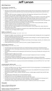 program manager resume project manager resume resumesles net