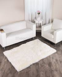 Area Rug 4 X 6 Flooring Interesting Floor Using Beautiful 4x6 Rugs Ideas