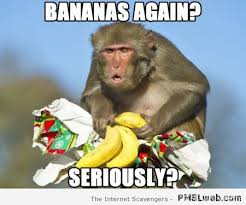 Funny Monkey Meme - 30 bananas again funny meme pmslweb