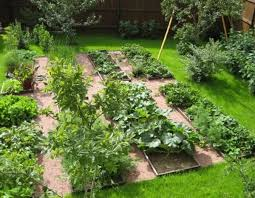 best 25 vegetable garden design ideas on pinterest raised bed