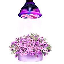t5 grow light bulbs grow light bulb lowes light bulb grow light bulbs pose any heat