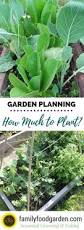 Permaculture Vegetable Garden Layout by Want To Know How Make An Urban Vegetable Garden This Article Will
