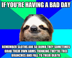 Having A Bad Day Meme - if you re having a bad day remember sloths are so dumb they