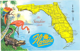 Florida Map Image by Vintage Florida Postcard Detailed Map Sunshine State Parrot