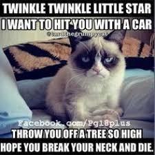 Angry Cat Meme Good - mad cat meme good