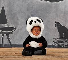 Infant Skunk Halloween Costume Halloween Costumes Babies 0 24 Months Pottery Barn Kids