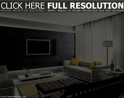 apartments stunning living imposing small apartment room design