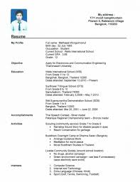 Profile On Resume Examples Example Profile For Resume Cover Letter Job Resume Profile