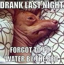 Hangover Meme - always have some water hangover meme meme and memes