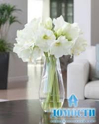 Silk Amaryllis Flowers - large artificial flower arrangements foter