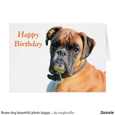 boxer dog meme image from http rlv zcache com