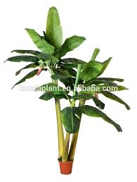 banana trees cheap artificial tree plants rubber tree plant