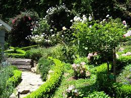best 25 small english garden ideas on pinterest english country
