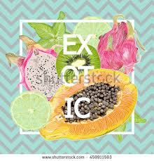 bright juicy color summer sunny fruit stock vector 459911593