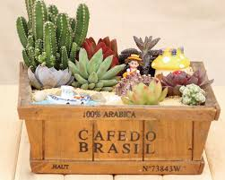 wood flowerpot cacti succulent plant pot flower planter mini