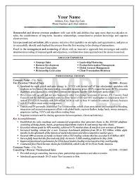 Account Executive Resume Example by Executive Summary Resume Example Executive Summary Resume Example