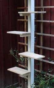 katzenleiter balkon katzenleiter 02 215 515 cat ladders cat gatos and