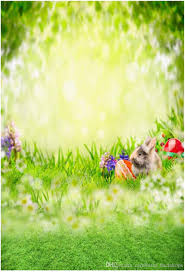 easter backdrops 2017 5x7ft photo background easter day animal