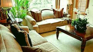 Best Plants For Living Room Best Indoor Shade Plants For Low Light Rooms Better Homes And