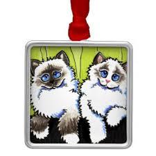 ragamuffin cat gifts on zazzle