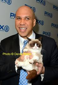 Cory Booker Meme - photos grumpy cat is not impressed with sen cory booker red