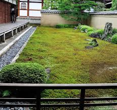 moss covered zen garden