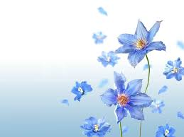 mother u0027s day flower background u2013 hd backgrounds pic