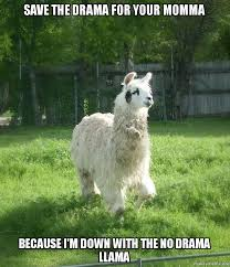 Llama Meme - save the drama for your momma because i m down with the no drama