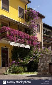 italy gardasee sirmione old town house facades floral stock