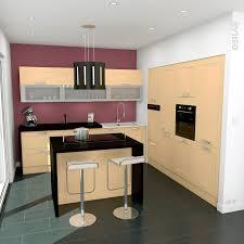 plan central cuisine cuisine avec ilot central en bois ouverte sur séjour meuble avec
