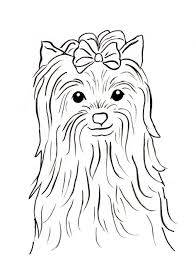 coloring download yorkshire terrier coloring pages yorkshire