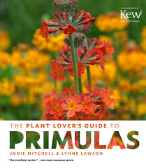 the plant lover u0027s guide to primulas the plant lover u0027s guides