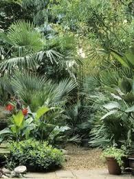 tropical gardens garden ideas gardening ideas pinterest