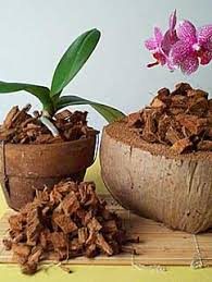 orchid bark orchid potting mixes coconut husk