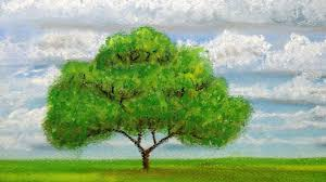 how to draw a tree at distance with pastels youtube