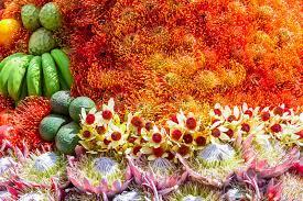 fruits flowers festive fruits flowers decoration madeira flower festival