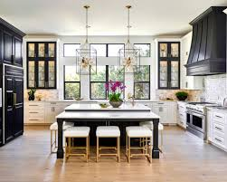 kitchen ideas decorating houzz 50 best transitional kitchen pictures transitional