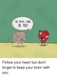Follow Your Heart Meme - you never learm follow your heart but don t forget to keep your