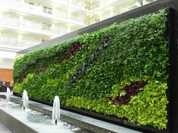 Best Plants For Vertical Garden - best green wall vertical garden plants on walls vertical gardens